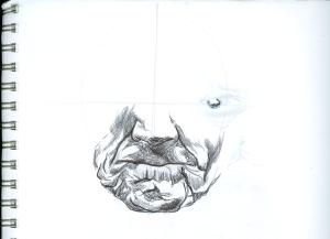 estudio de boca de anciano_2006