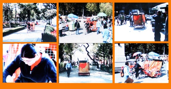 collage still de video_Auriga 2008_recorrido por la Alameda Central