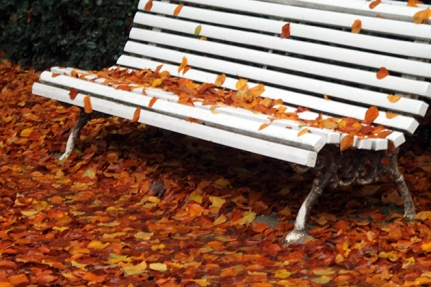 otoño-invierno nov2014